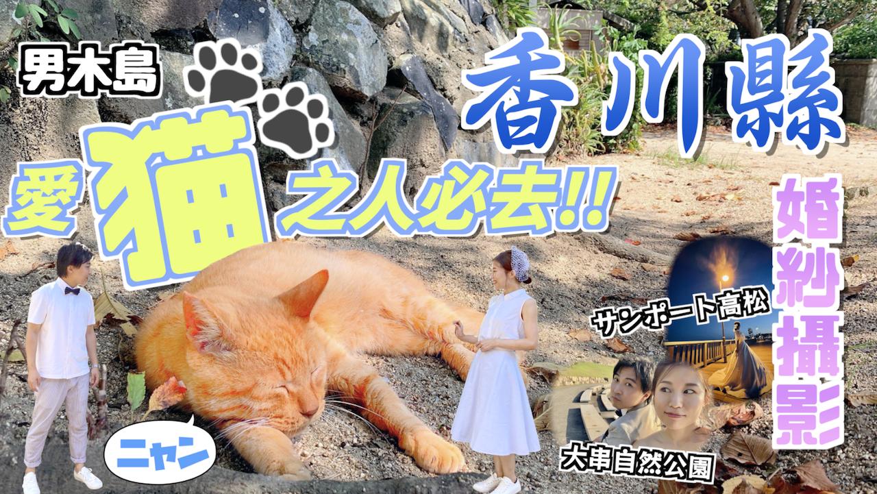 【日本】享受香川縣怡人景色🇯🇵男木島邊玩貓邊拍攝的婚攝體驗!|香川県男木島でネコと触れ合いながらフォトウェディング!🐱