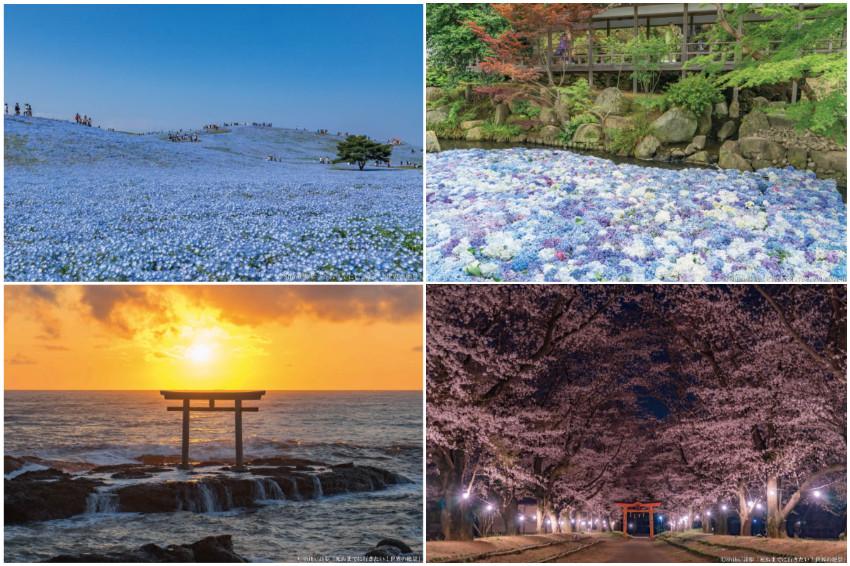 東京近郊玩什麼?茨城縣必訪的9大夢幻絕景不藏私大公開!美哭的海上鳥居、鋪滿整片大地的超壯觀粉蝶花海公園,超多精彩景點值得一訪再訪!