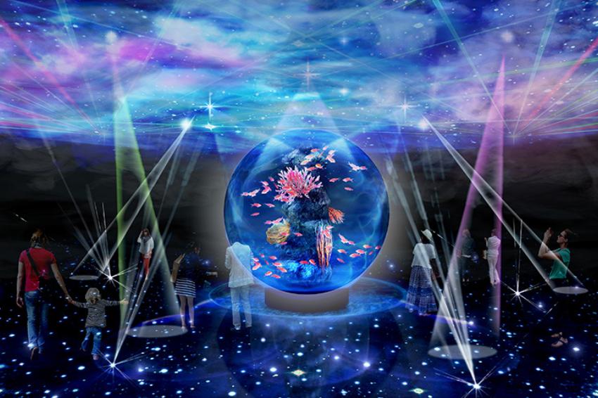 關西旅遊地標再+1!超夢幻「átoa藝術水族館」進駐神戶港博物館,超過3千隻海洋生物齊聚一堂!