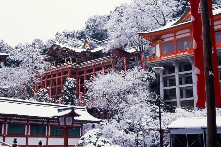 祐德稻荷神社、環境藝術之森,佐賀4大絕美賞雪景點報你知!