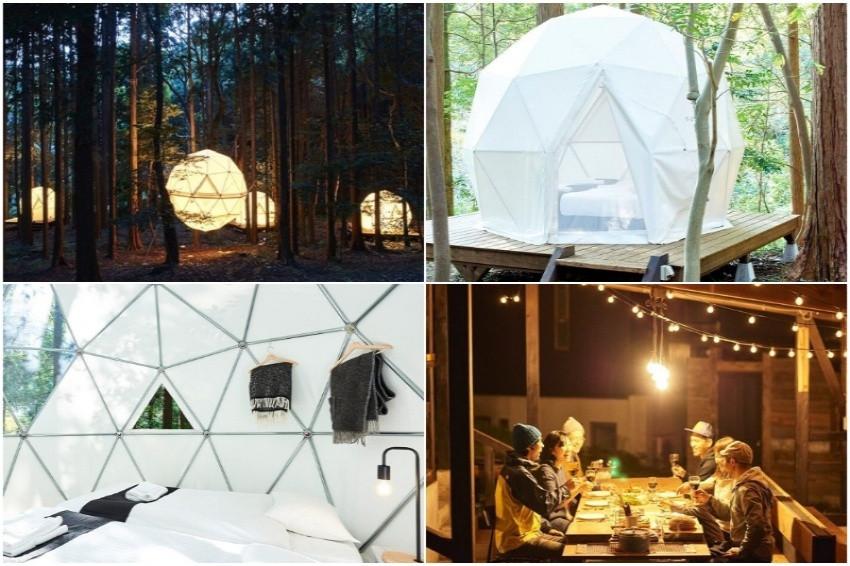 來去公園住一晚!靜岡「IN THE PARK」森林中的球形帳篷。