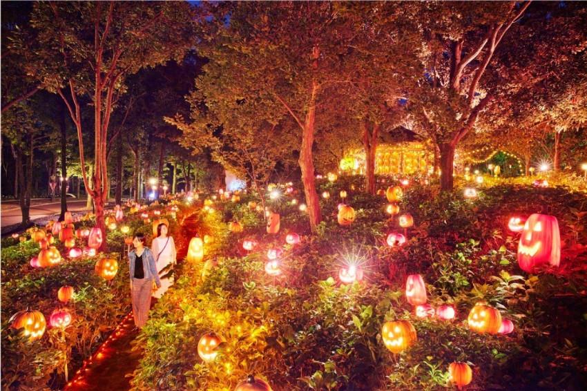 3千顆南瓜燈點亮夜晚!豪斯登堡萬聖活動「閃耀的萬聖夜」超炫目,來這裡過一個可愛的萬聖節吧!