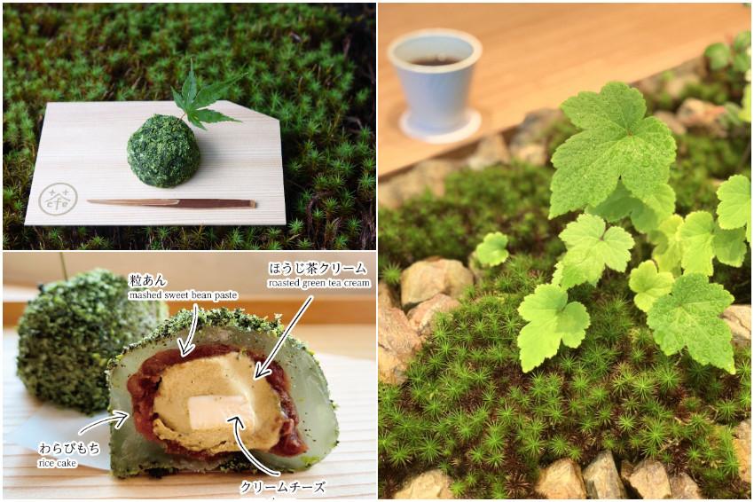 超萌苔玉球植栽竟然可以吃!?京都和風咖啡館「京茶珈琲cafe」職人巧手打造超擬真苔玉球甜點期間限定登場