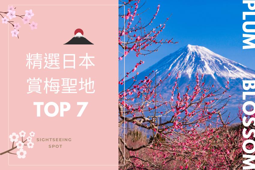 日本7大賞梅聖地推薦!熱海梅園、太宰府天滿宮,從北到南一處不漏大蒐羅!
