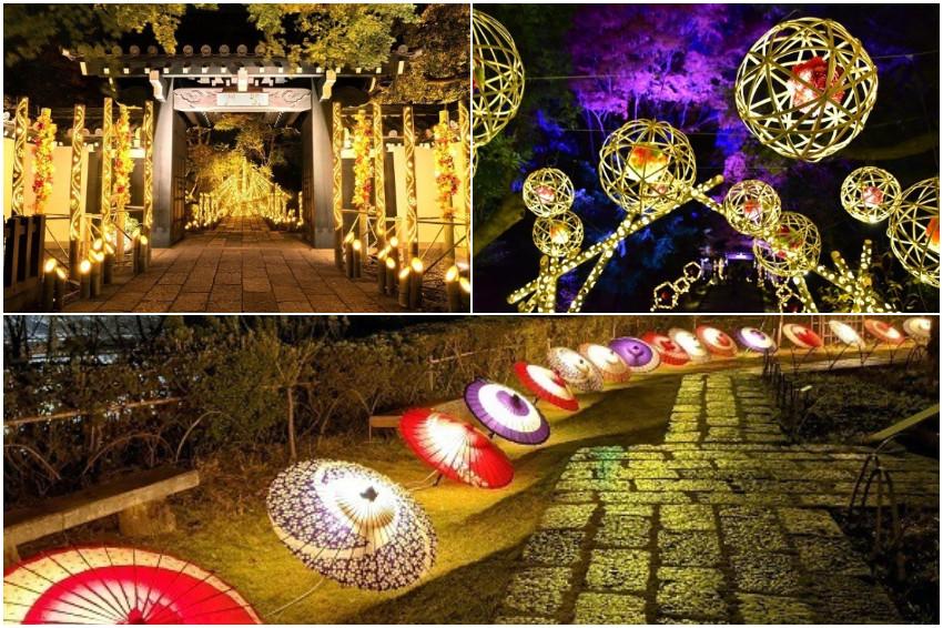 竹燈、和傘交織出日式風情,花卉主題樂園 HANA.BIYORI展覽「竹燈HANA AKARI」絕美開催!