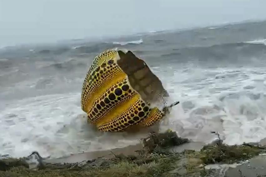 直島地標不敵颱風!草間彌生「黃色南瓜」落海嚴重受損,想重新復出必須再等等