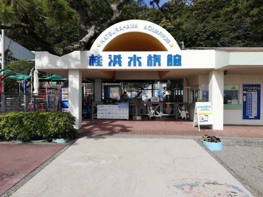 水族館 高知