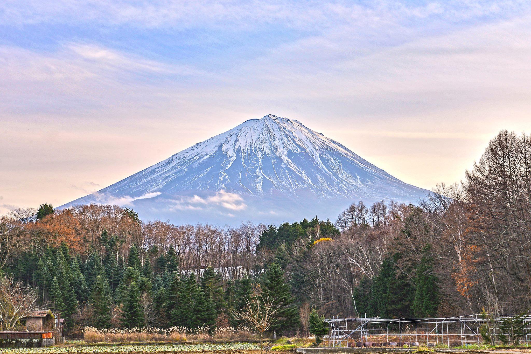 日本東京&富士馬拉松輕旅行,滿山的楓葉美景超美!