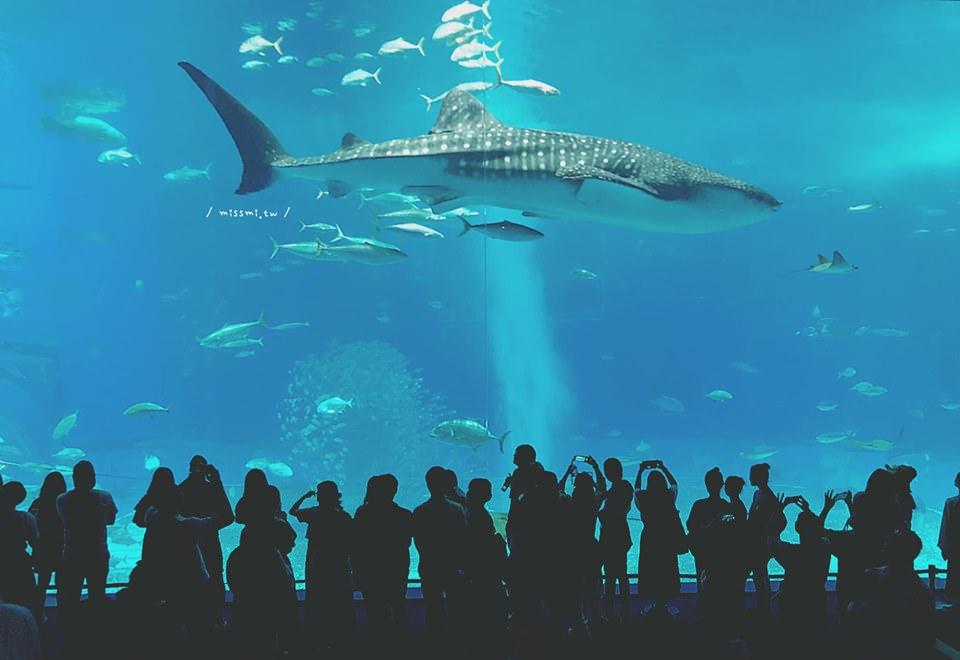 沖繩自駕旅行 ◆ 4天3夜特別推薦美好小旅行計畫特輯 - 蜜絲米的散步生活